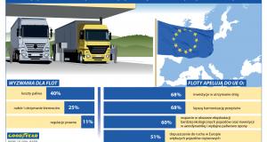 Goodyear_Wyniki badania_infografika